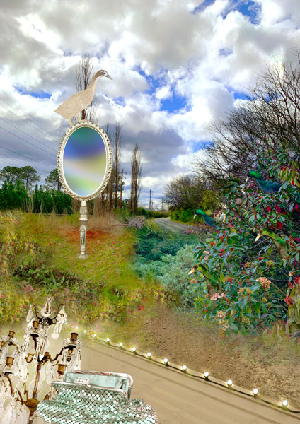 digital artwork, send your photo, placement in sliver duck magic mirror scene